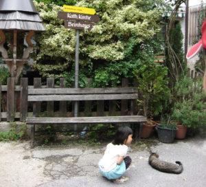 国際交流?|庭×猫…ときどき犬フォトコンテスト