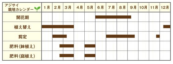アジサイ栽培カレンダー